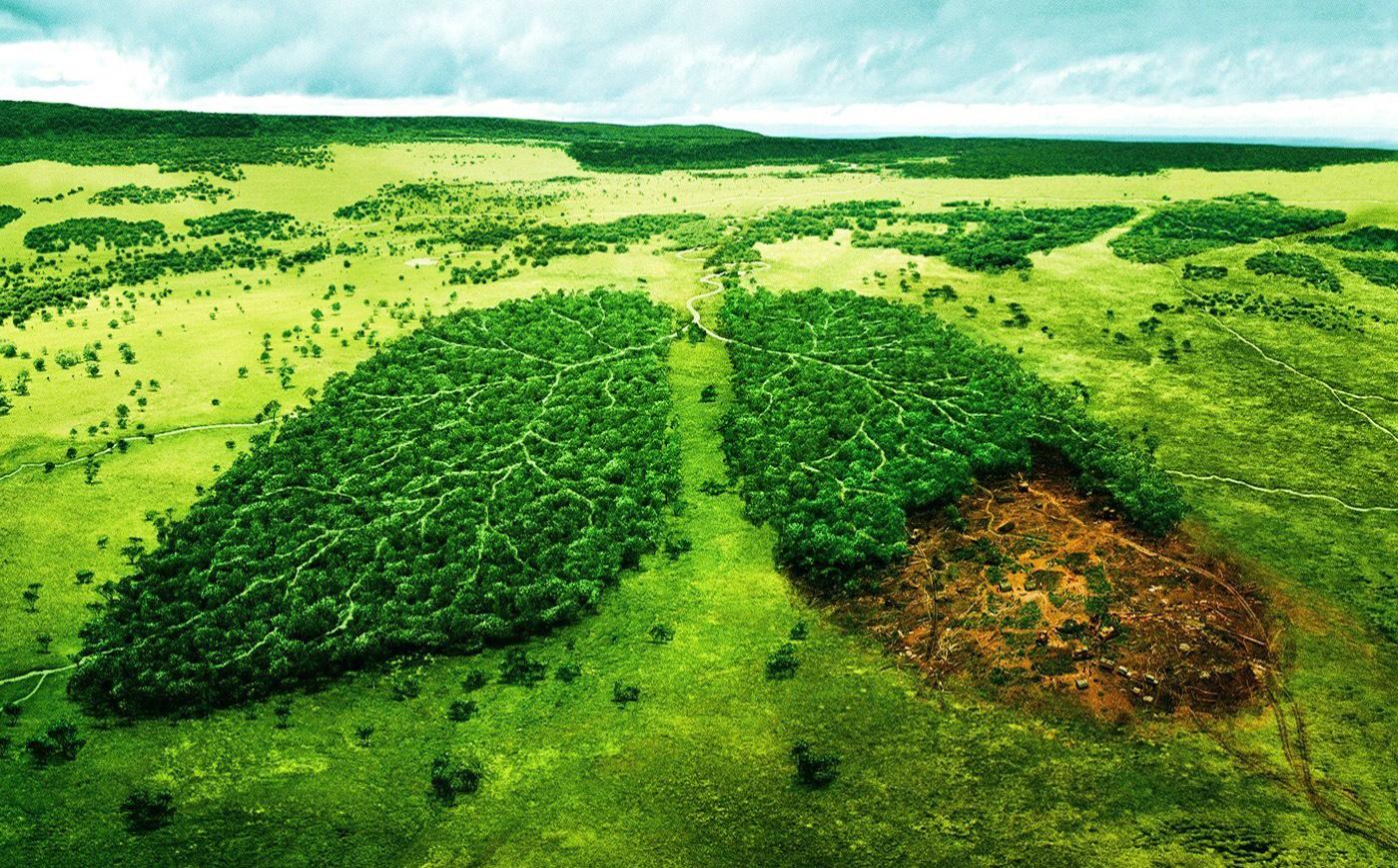 کاربرد پمپ وکیوم در صنعت محیط زیست